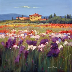 Fiori Selvatici Nel Campo VI by Bruno Tinucci - Original Painting on Stretched Canvas sized 24x24 inches. Available from Whitewall Galleries
